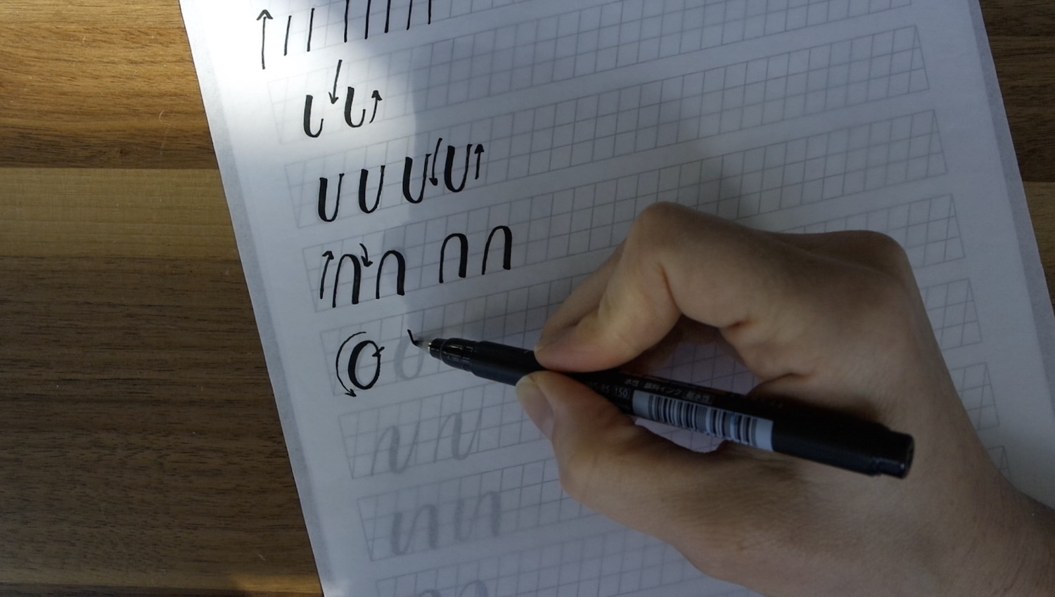 Beginner's Guide to Modern Calligraphy