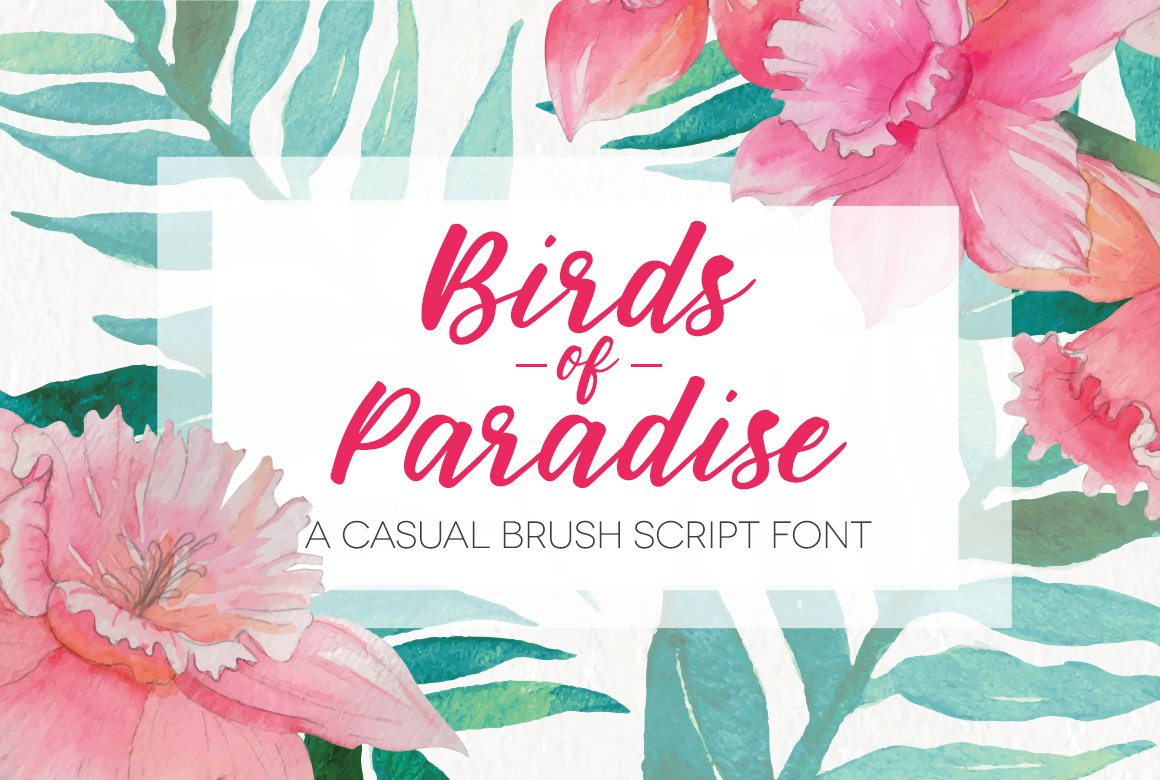 Favourite Hand Written Script Fonts